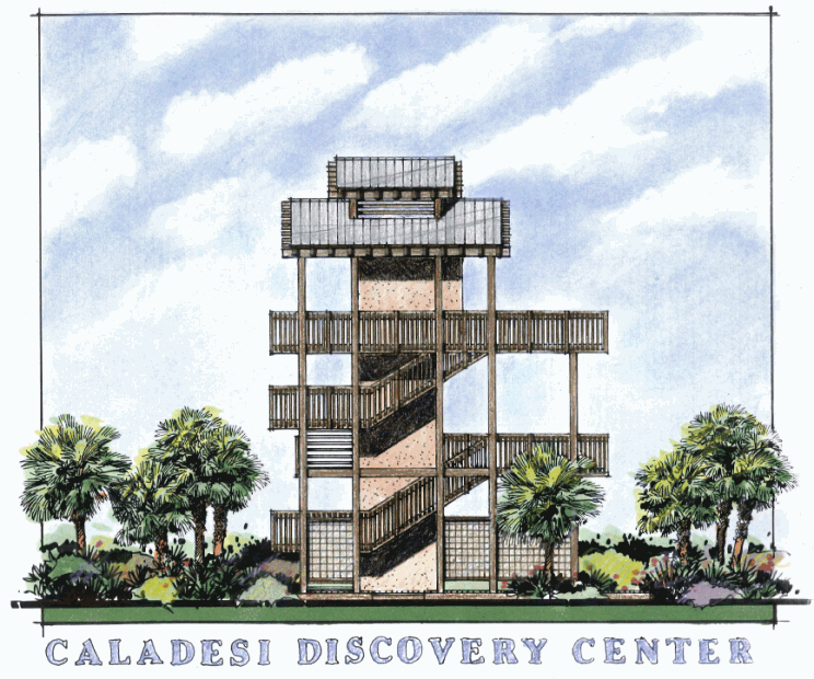 Architectural Rendering of Caladesi Discovery Center
